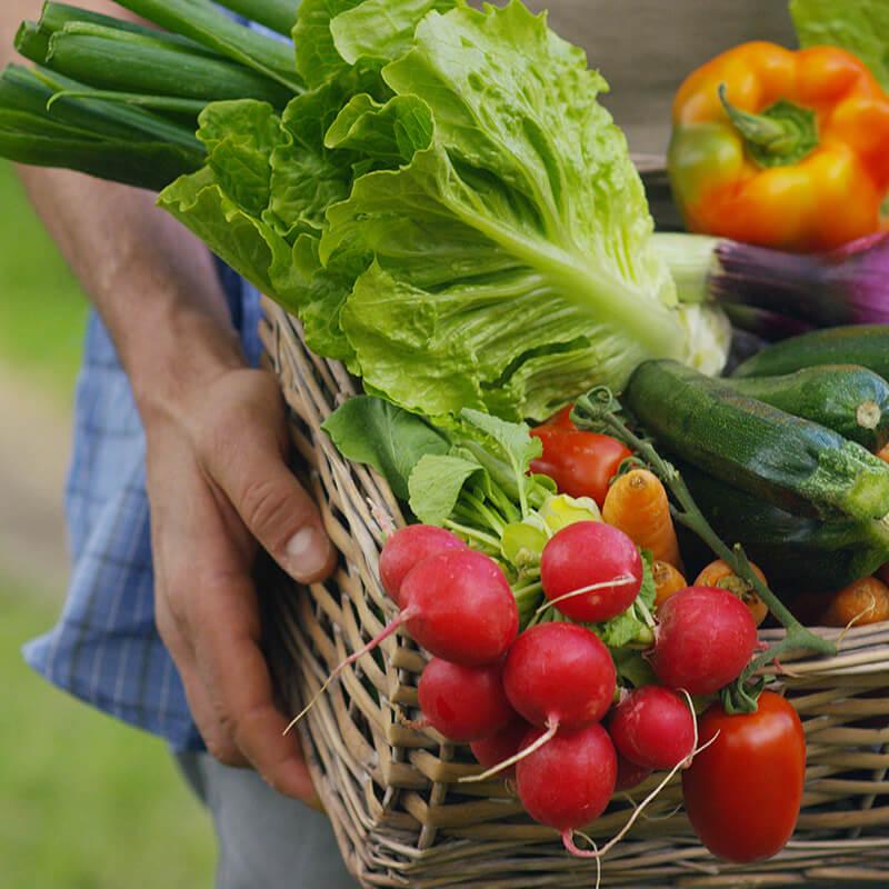 buy fruit vegetables flinders